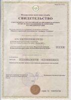 dokty_tolmachevo_1